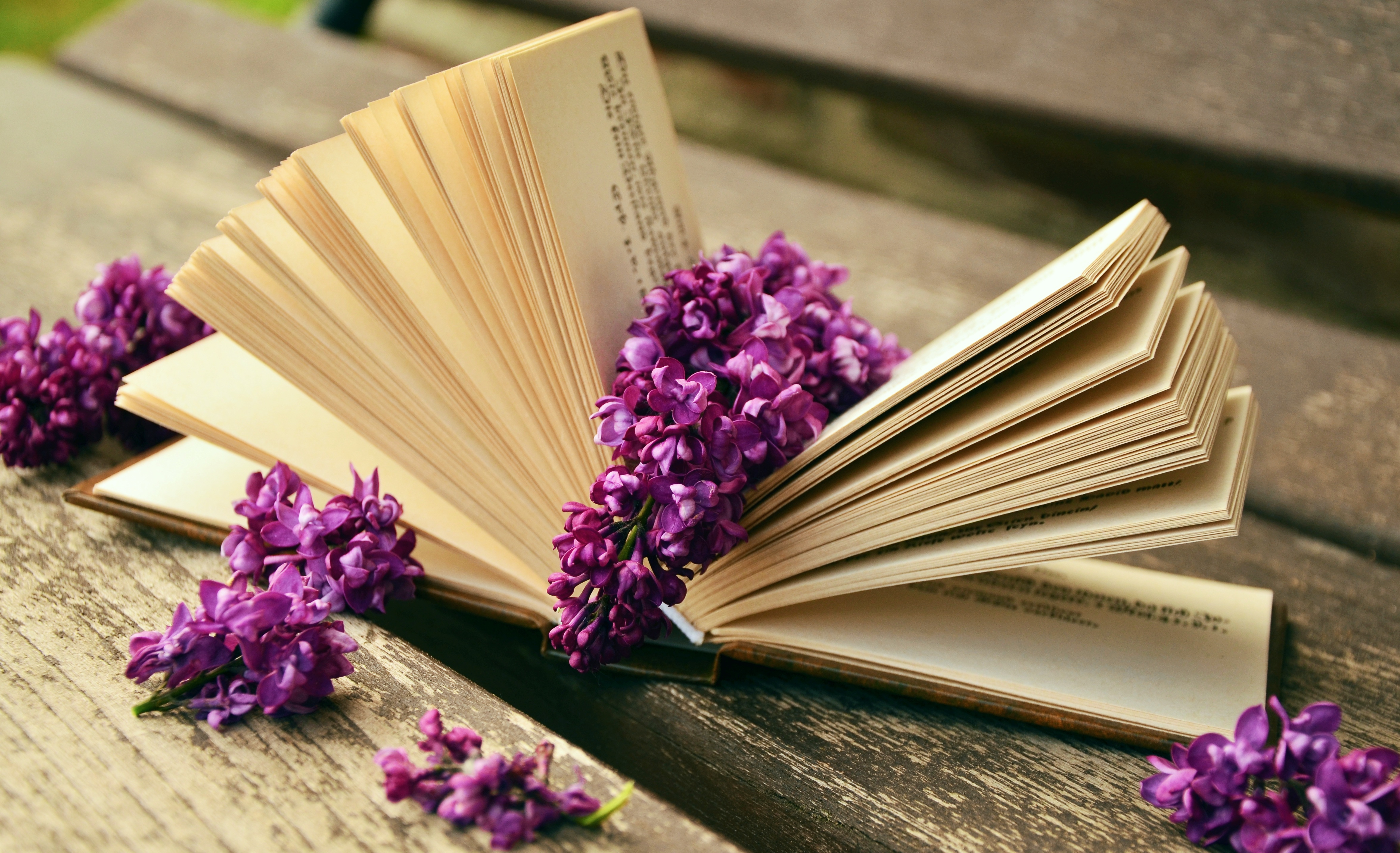 book-759873.jpg