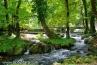 Река Врело и стећци у Перућцу (1)