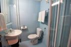 Hotel Beli Bor - Dvokrevetna soba – francuski ležaj (6)