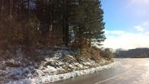Prvi sneg na Tari (2)