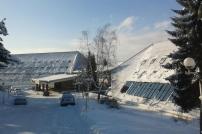 Omorika pod snegom.jpg