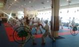 U Belom boru pripreme karatista za Evropski šampionat (2)