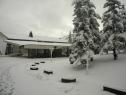 Oko 20 santimetara snega na Tari (2)