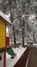 Oko 20 santimetara snega na Tari (6)