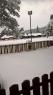 Oko 20 santimetara snega na Tari (7)
