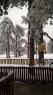 Oko 20 santimetara snega na Tari (9)