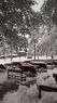 Oko 20 santimetara snega na Tari (11)